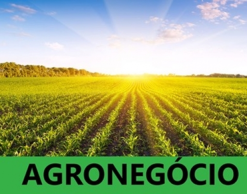 0f366bf1f89f6 Brasil é competitivo no AGRO e isso incomoda! – WebRural Consultoria ...